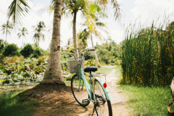 World's 10 Best Islands to Ride a Bike